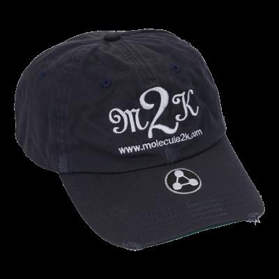 CAP : AMPED M2K Navy Blå Strapback-20